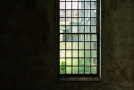 Large window. Ambient light