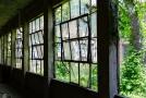 Windowed hallway